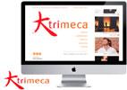 diseño de web de empresa e informativa para trimeca